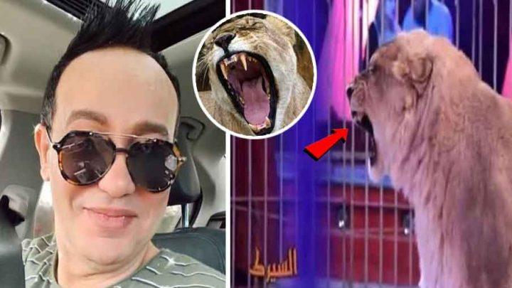 علاء الشابي: عضّني قرد و تلقيت لقاح الكلب و أصيب رأسي حين هربت من الأسد